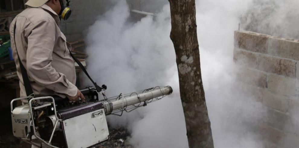 Minsa reporta baja en los casos de dengue en 2018