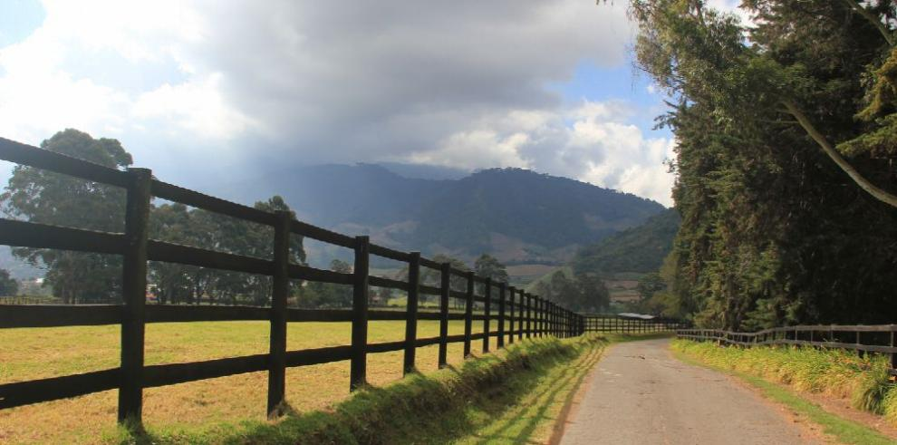 Turismo al galope: Haras Cerro Punta