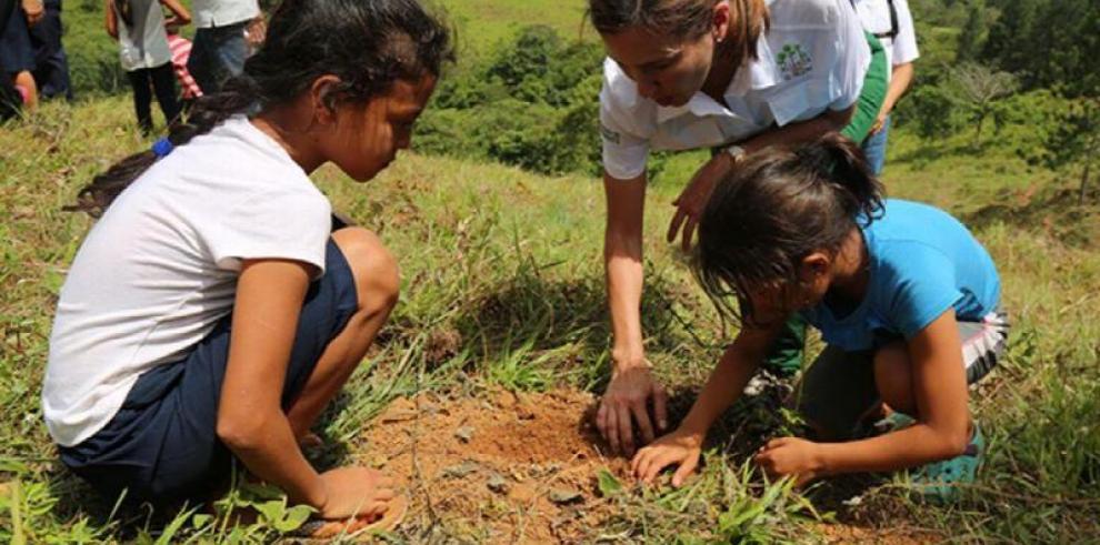Quinta edición del Día Nacional de la Reforestación será el 22 de junio