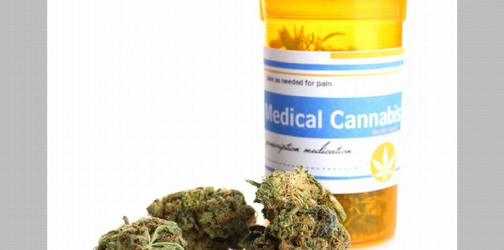 'Sí al cannabis medicinal, pero no al cultivo de la planta en Panamá'