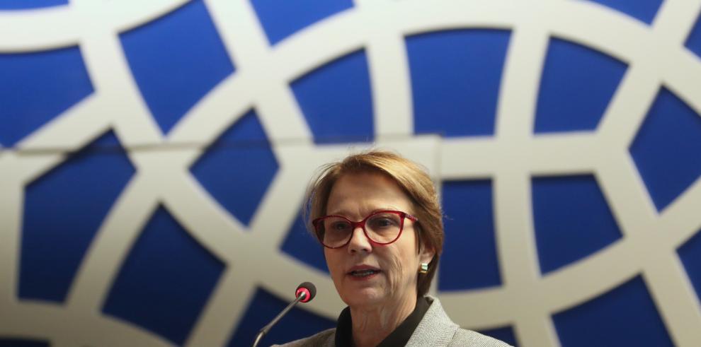Brasil podrá exportar productos lácteos a Egipto