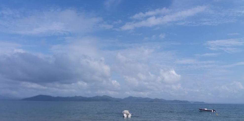 Pescadores amenazan a tiburones hembra preñadas Punta Chame