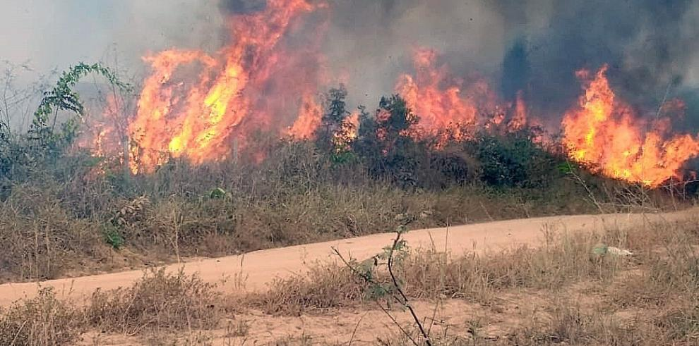 La CE preparada para enviar ayuda contra los incendios en la Amazonía