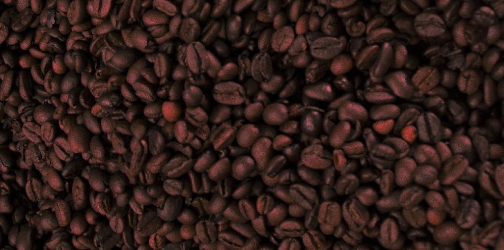 BDA financiará producción de café geisha en la comarcaNgäbe Buglé