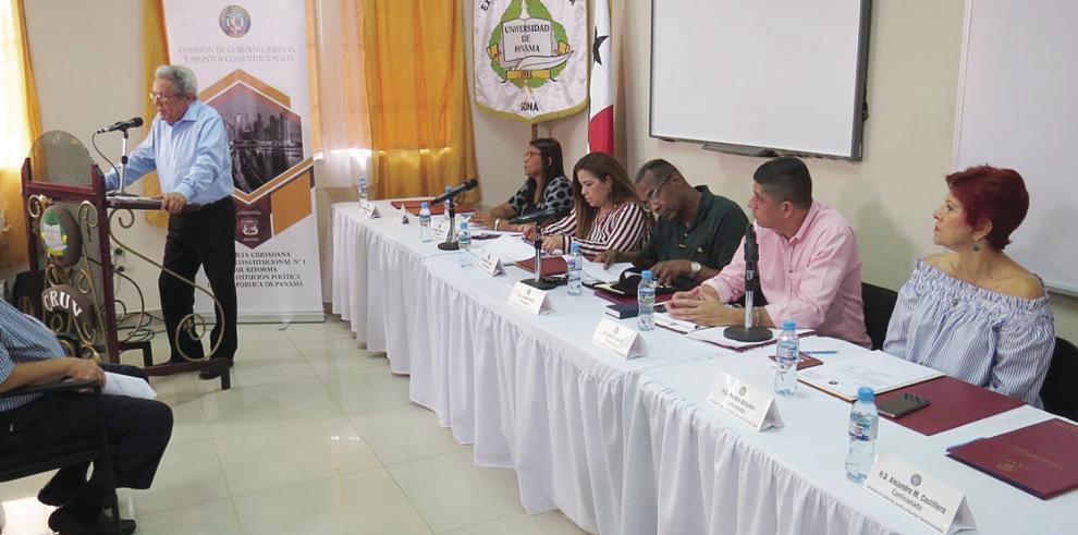 Las consultas se realizan en todo el país y son presididas por el diputado Leandro Ávila.