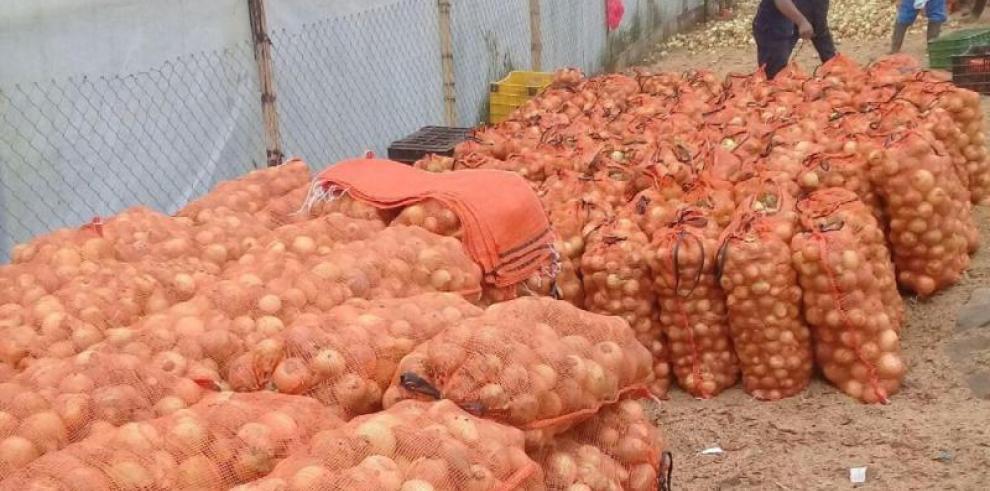 Gobierno reduce a 0% arancel de importación de cebolla