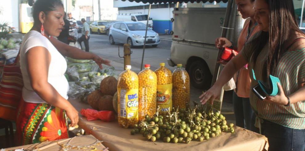 Familias emberá desarrollan prácticas agroecológicas