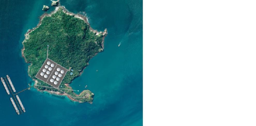 Boná Pacific Corp. se compromete a conservar la biodiversidad de la isla