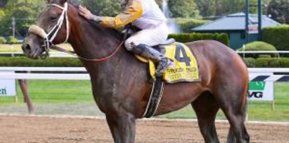 'Forever Unbridled' busca consagrarse