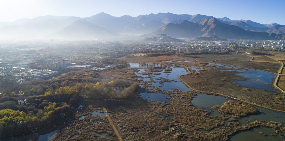 China publica libro blanco sobre progreso ecológico en meseta Qinghai-Tíbet