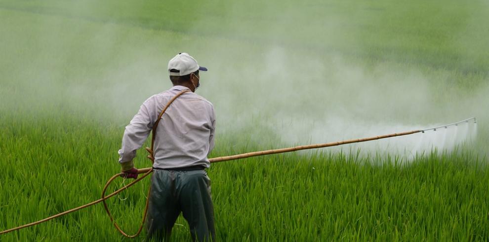 Pesticidas y perfumes contaminan el aire urbano al nivel de los vehículos