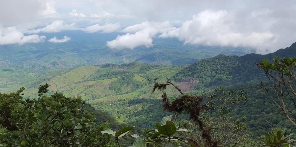Inician estudios para trabajar plan eco turista en el cerro Chucantí