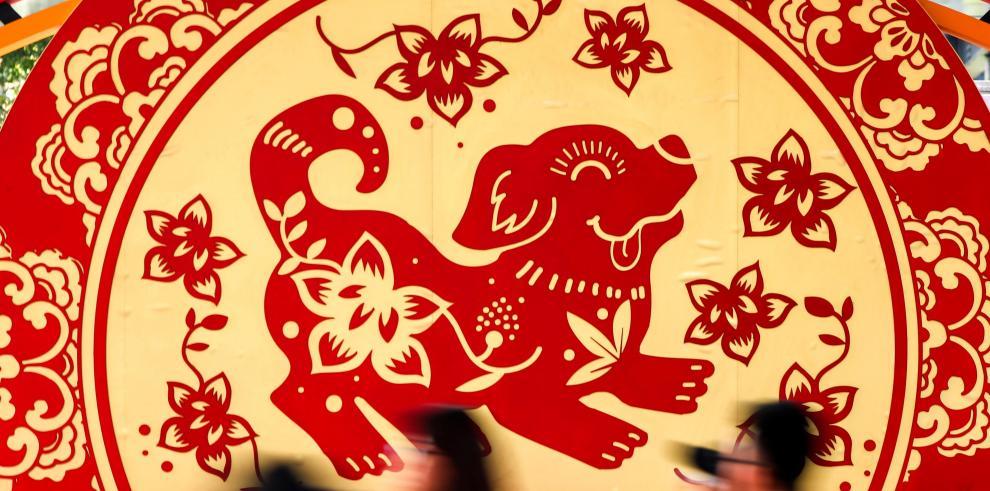 Alerta sanitaria en Año Nuevo chino tras contagio a humano de la gripe aviar