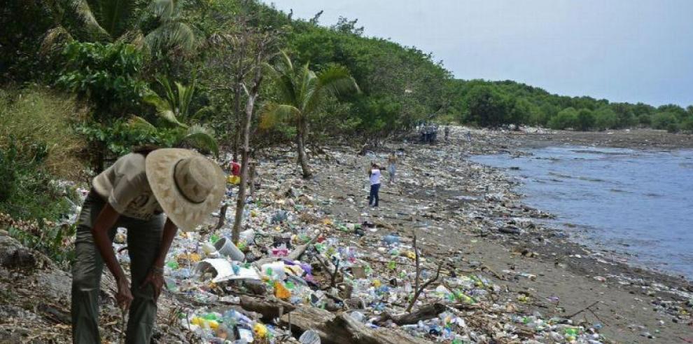 América Latina: Región más peligrosa para ambientalistas, según expertos