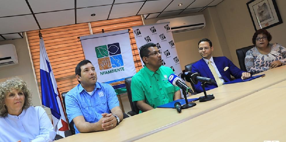 IFF Panamá tendrá su 'alfombra verde'