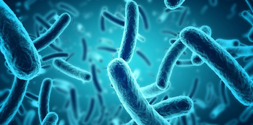 Descubren nueva especie de bacteria en Costa Rica