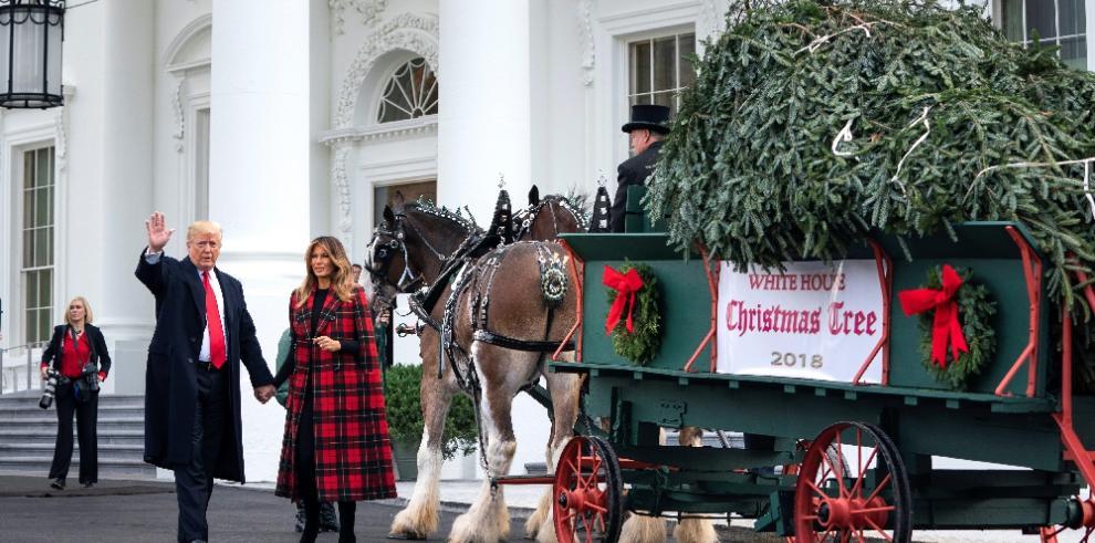 Donald Trump recibe por primera vez el árbol de Navidad de la Casa Blanca