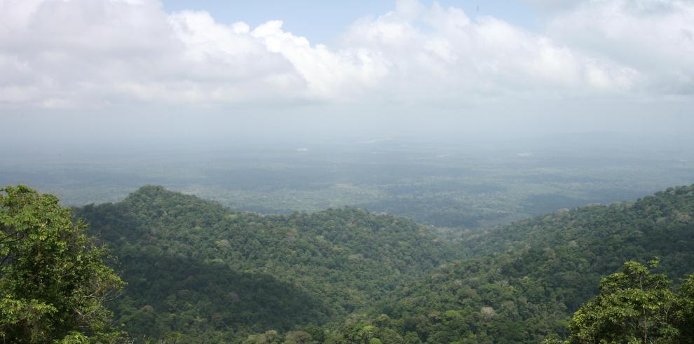 Panamá presenta informe sobre carbono forestal a las Naciones Unidas