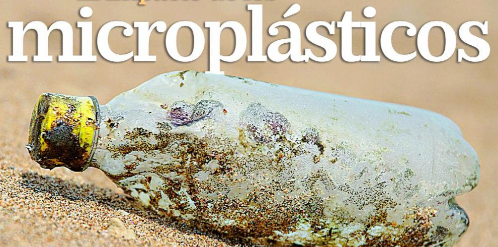 El impacto de los microplásticos