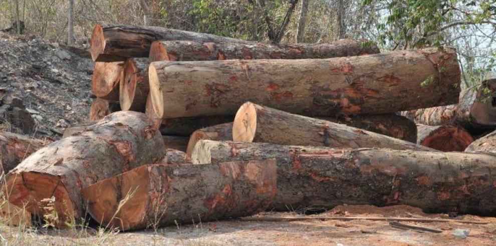 Gobierno denuncia daños a recursos naturales en provincia del Darién