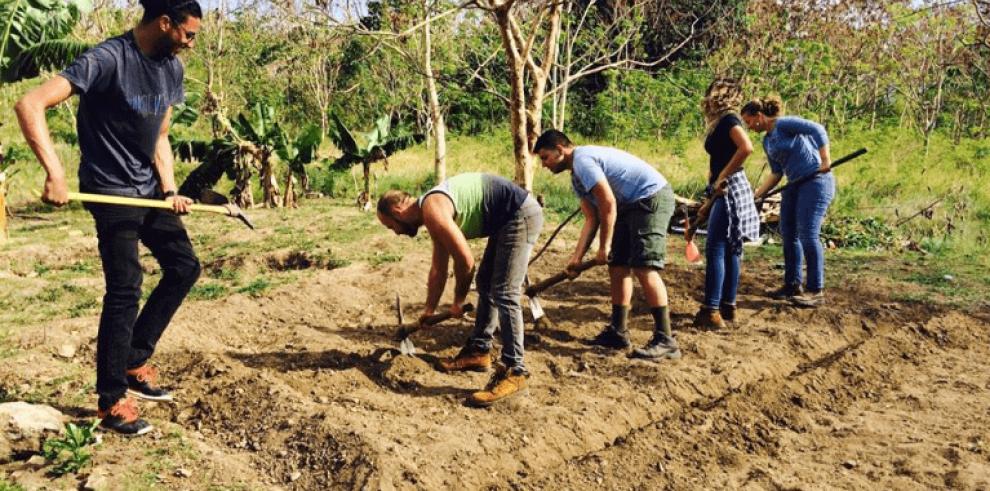 Proyectos panameños podrán postularse a 'Donativos Ambientales Ford'