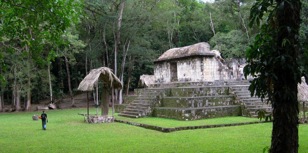 Smithsonian revela que los mayas intercambiaron perros vivos para ceremonia
