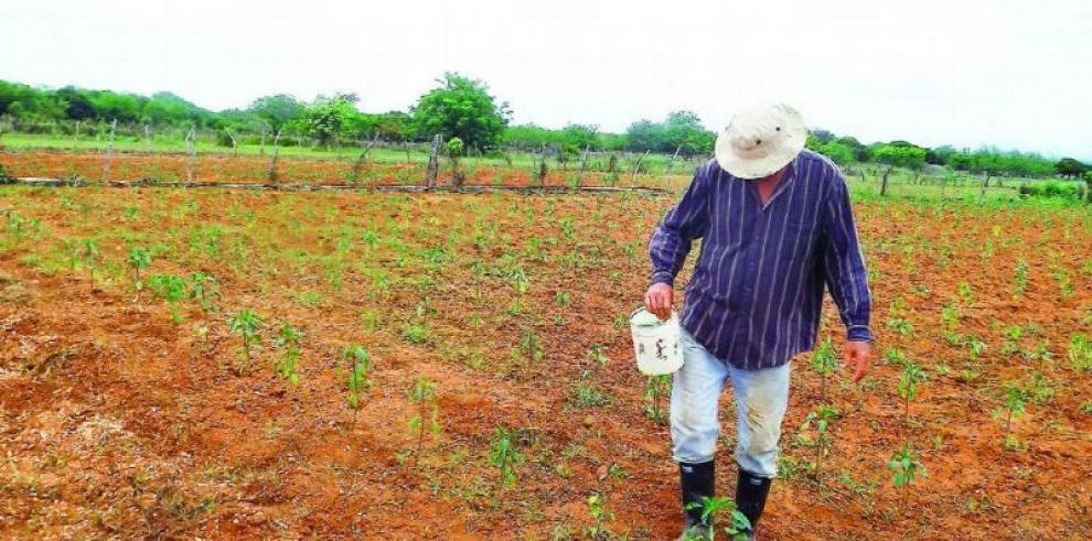 $75 millones ha aprobado la Asamblea para el Agro