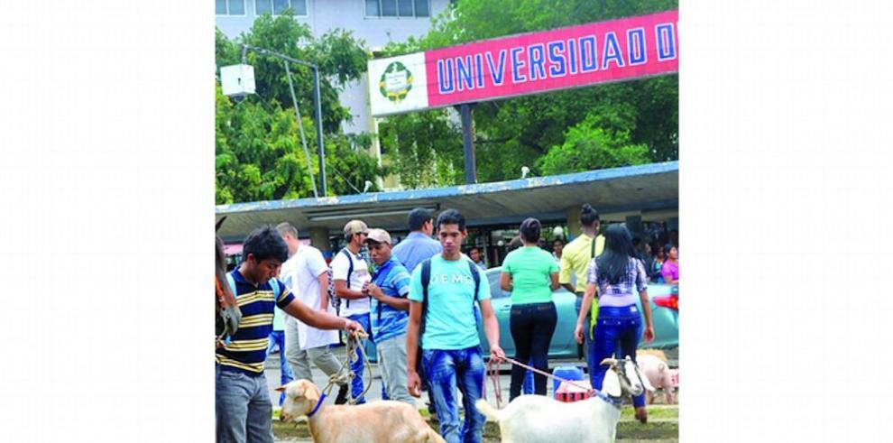 Estudiantes de agropecuaria vuelven a exigir terrenos para sus prácticas