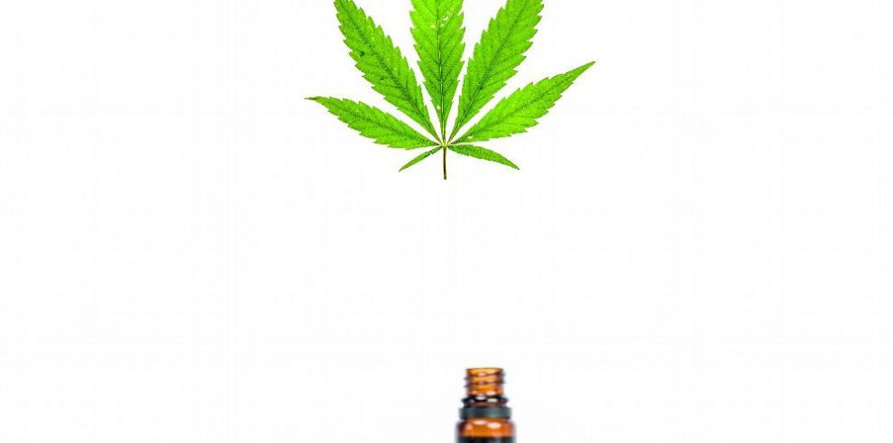 Los dos extremos del debate de la legalización de la marihuana