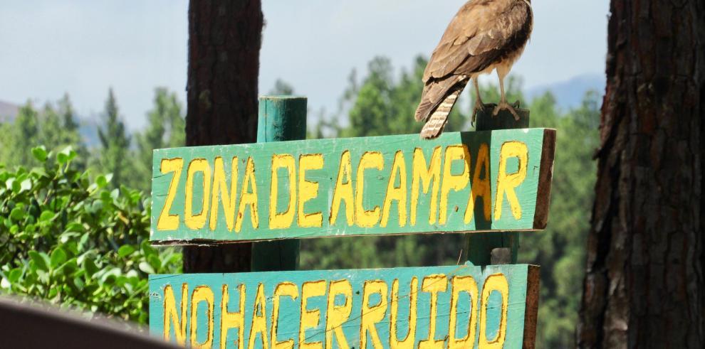 'Camping' en La Yeguada