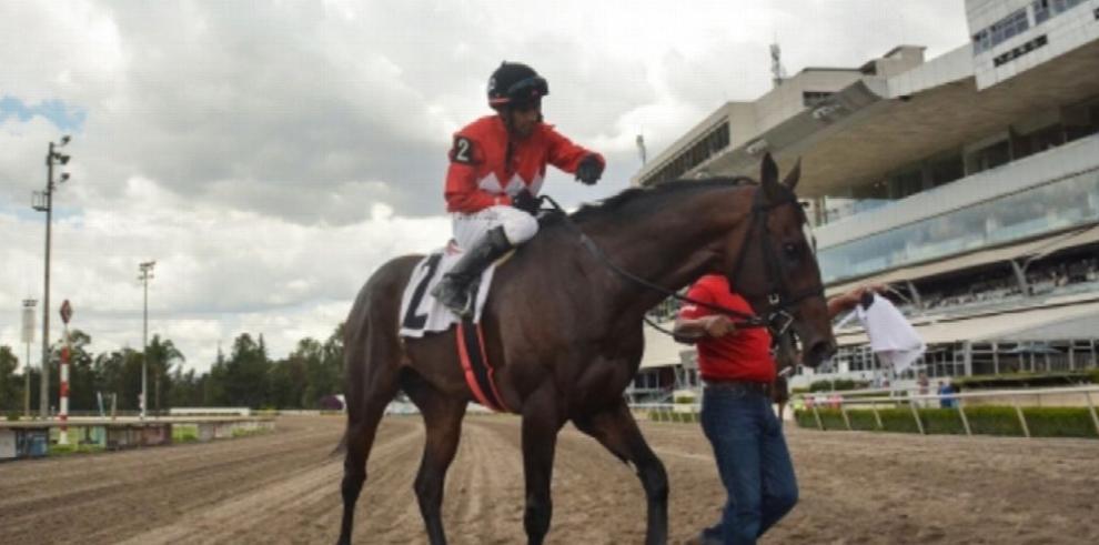 Kukulkán será favorito en el Derby caribeño