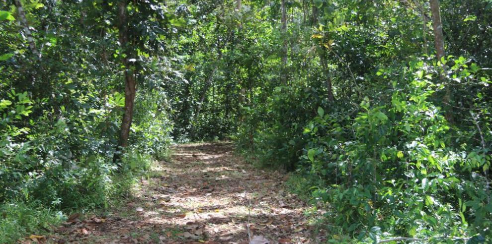 Fincas agroturísticas: un encuentro con la naturaleza