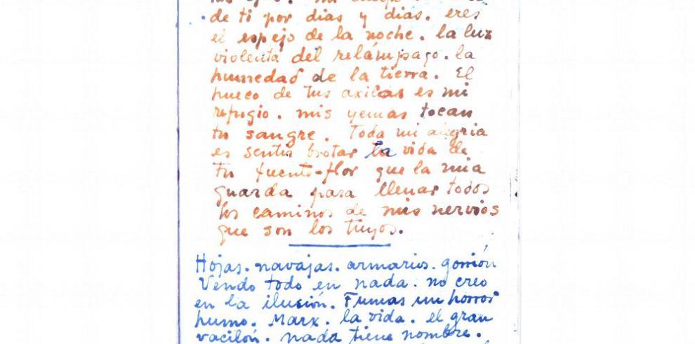 El diario de una Frida sumisa, apasionada y trágica