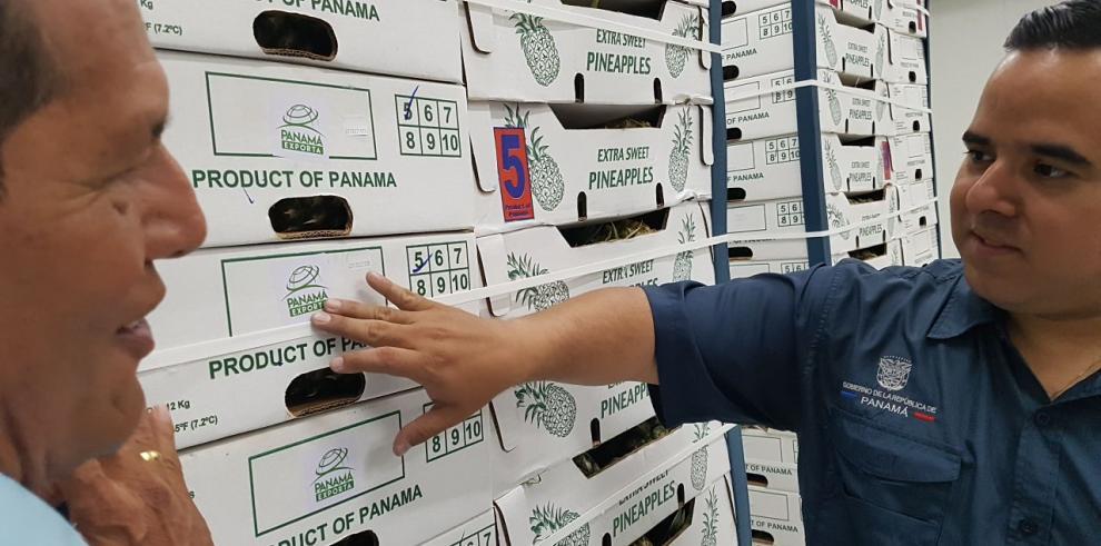 Panamá exporta piña a Dubái
