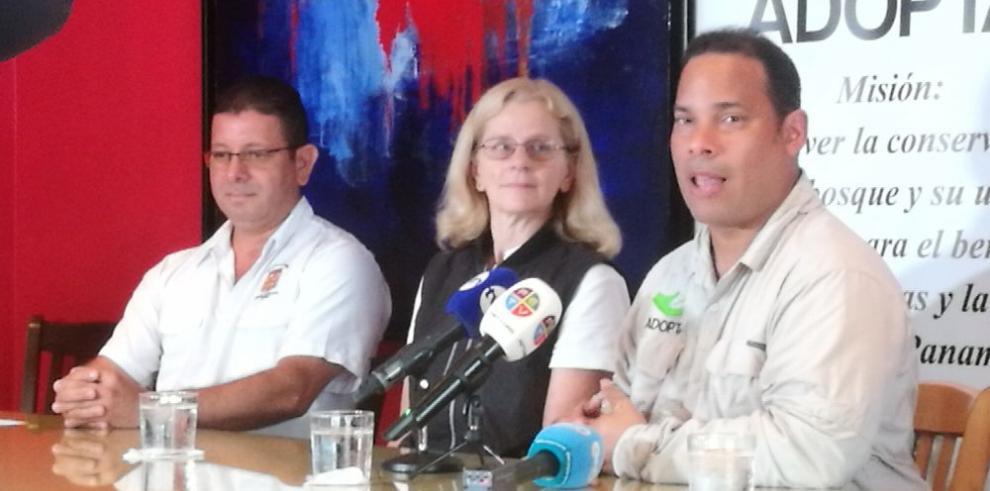 Panamá celebra su primer Día Mundial de las Aves Migratorias