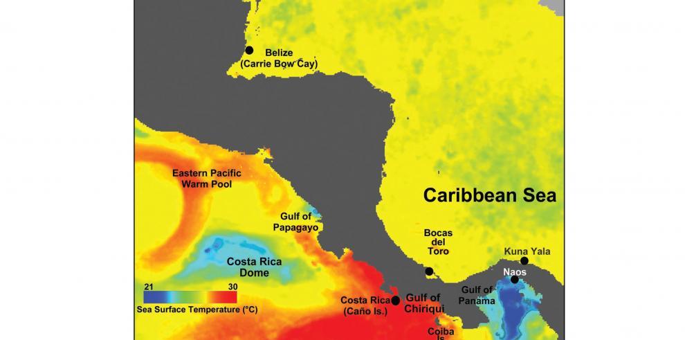 Oído de surfista y su relación con los antiguos buceadores de perlas en Panamá