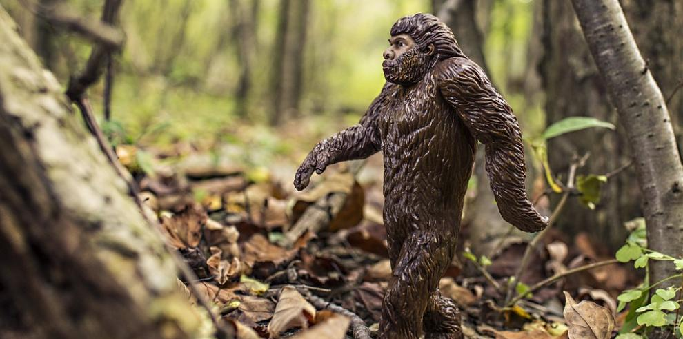 Los neandertales se adaptaron mejor a su entorno por sus caras antiestéticas