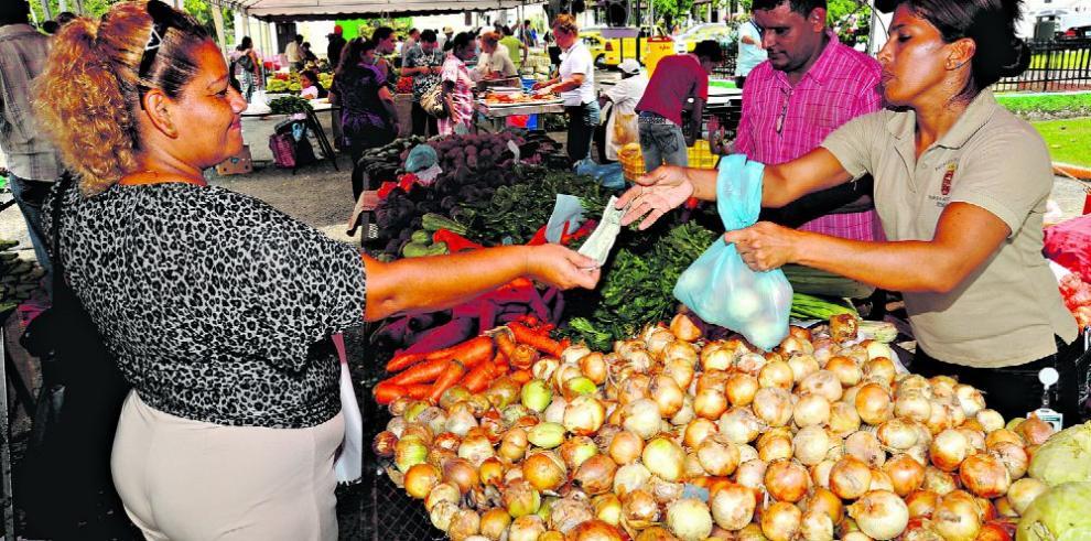 Hectareaje de cebolla merma 66.6% en una década, según Acpta
