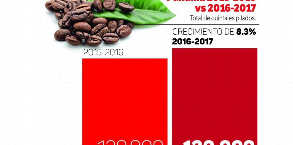 Crece producción de café 8.3% y se expande a nuevas áreas