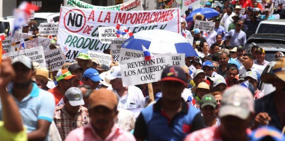 Unidos por el Agro solicita audiencia con el papa Francisco en Panamá