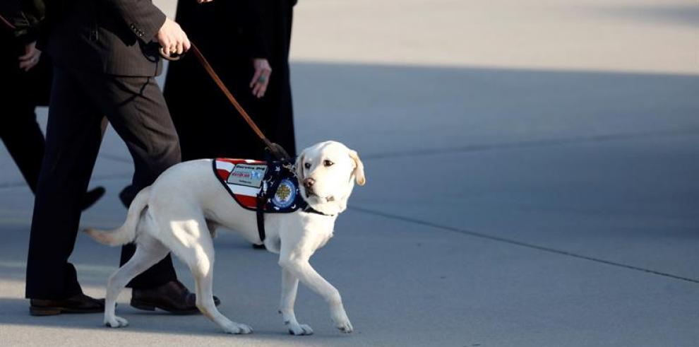 Comienza acto por fallecido George H.W. Bush en el Capitolio de EE.UU.