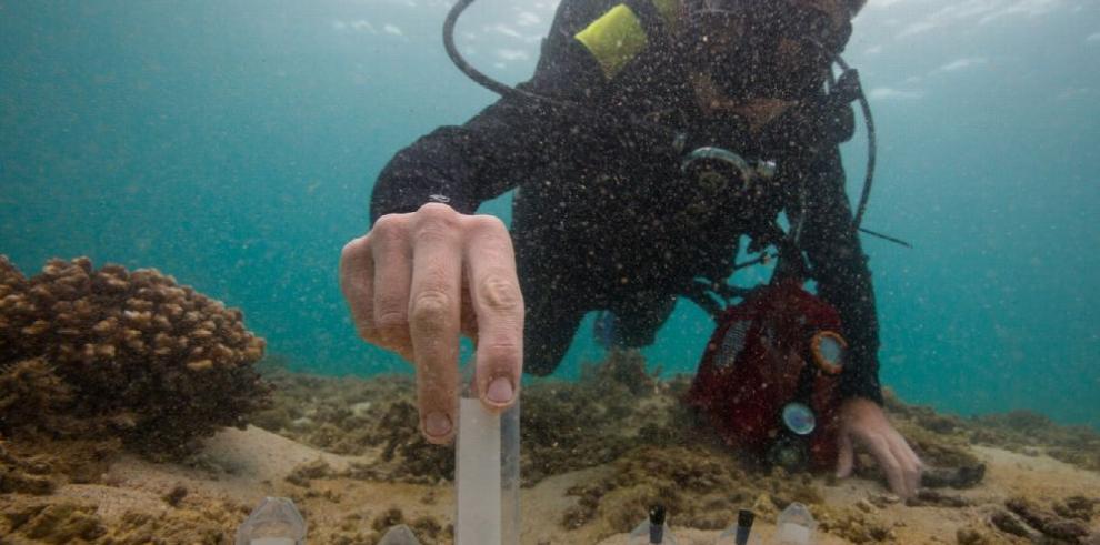 Expedición a Coiba marca nueva era de investigación