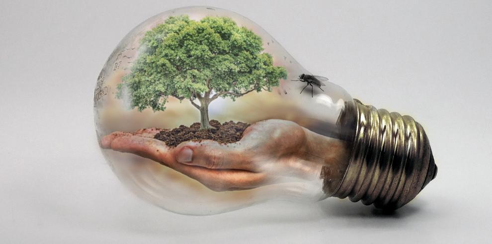 Negocios aceleran la lucha contra el cambio climático 2030