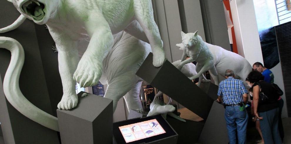 Integrar el Biomuseo a la ciudad