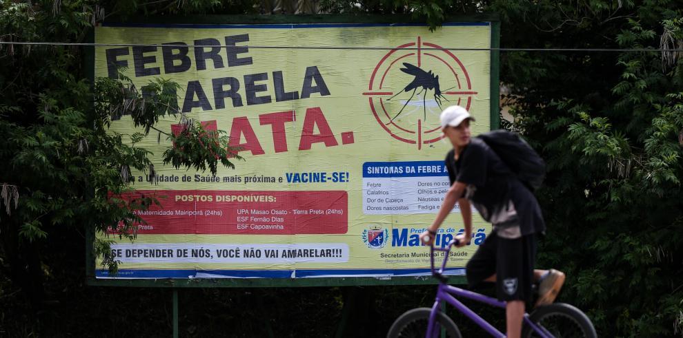 Brasil lucha contra la fiebre amarilla en vísperas del carnaval