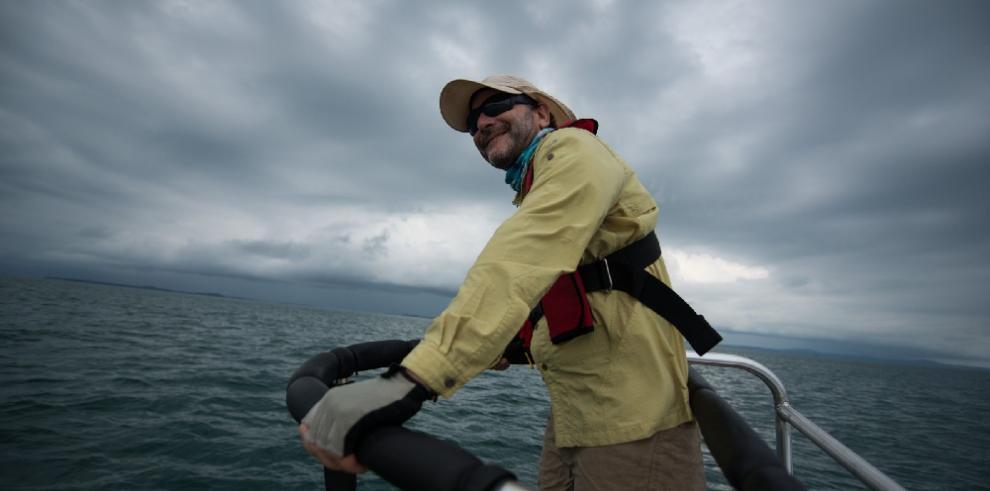 El tiburón ballena registra la migración trans-pacífica más larga de la historia