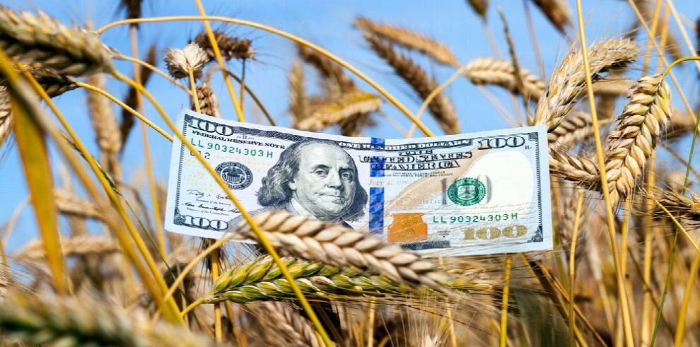 EE.UU. anuncia millonaria subvención para su industria agrícola