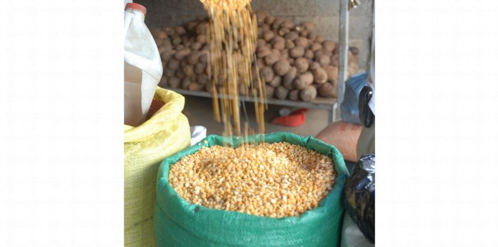 Reducen arancel de importación al maíz amarillo