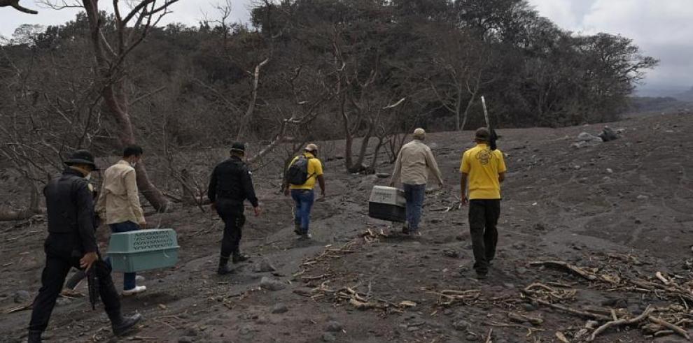 Los niños afectados por el volcán de Guatemala empezarán clases el 9 de julio