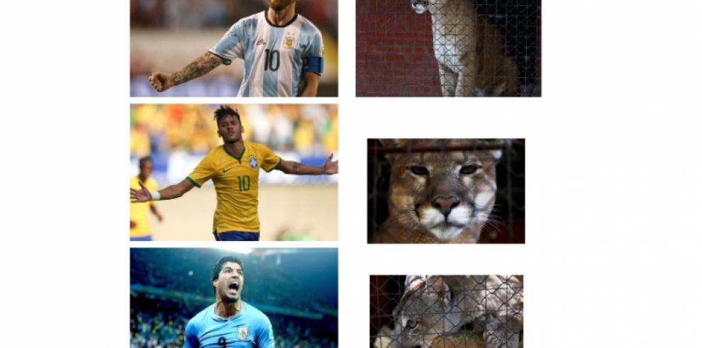 'Messi', 'Neymar' y 'Luis Suárez' crecen en Saransk